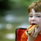kid eating hot dog