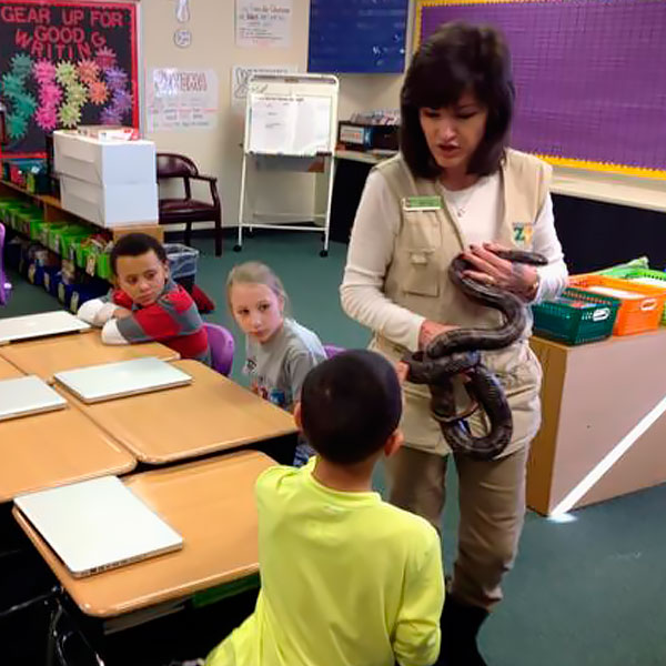classroom zoomobile program