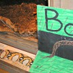 Bo slithers past the going away card created by his fans at the zoo in Saginaw Michigan where he lived prior to his arrival in Fort Wayne.