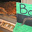 Bo Snake