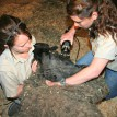 While zoo keeper Heather Schuh holds Roxy's head, keeper Sarah Sloan wields the shears.