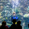 A diver chats with guests at the Fort Wayne Children's Zoo
