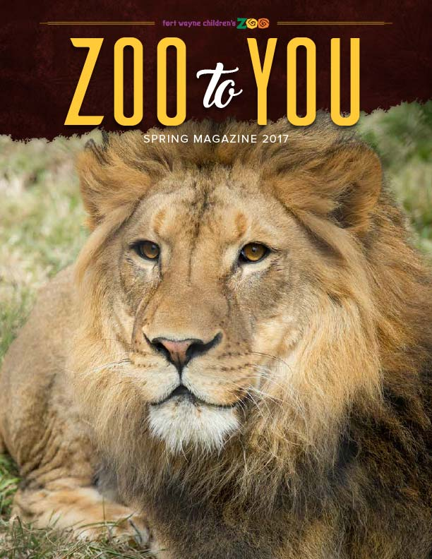2017 Spring Zoo to You