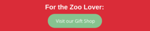 Zoo Lover