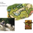 Australian Adventure Crocodile Creek Plan